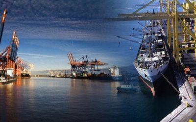 Công ty ủy thác xuất nhập khẩu tại việt nam