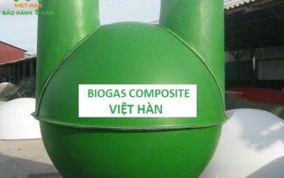 Tại sao nên đầu tư xây dựng hầm bể biogas hộ gia đình